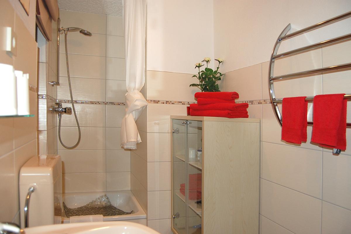 erotiknest_badezimmer_dusche